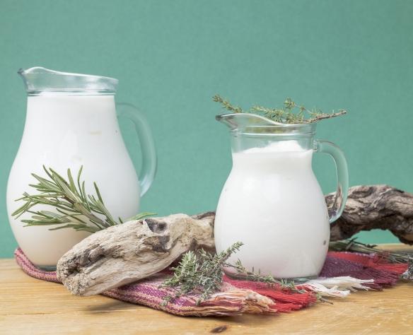 Sana din lapte de vacă Nicolas